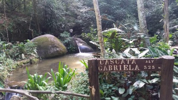 tour floresta tijuca e jardim botanico 4
